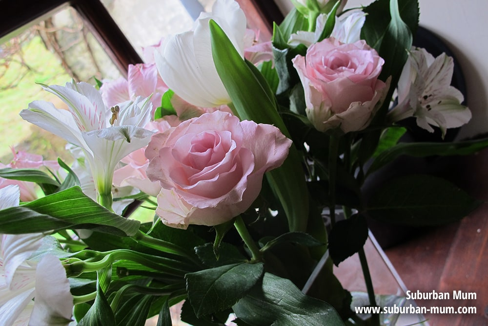 flowers-clydey-new