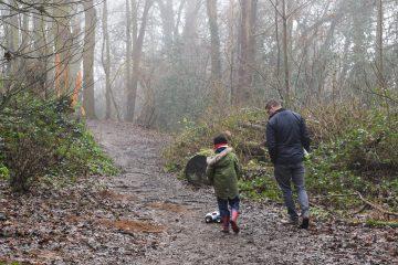 woodland-walk-ft