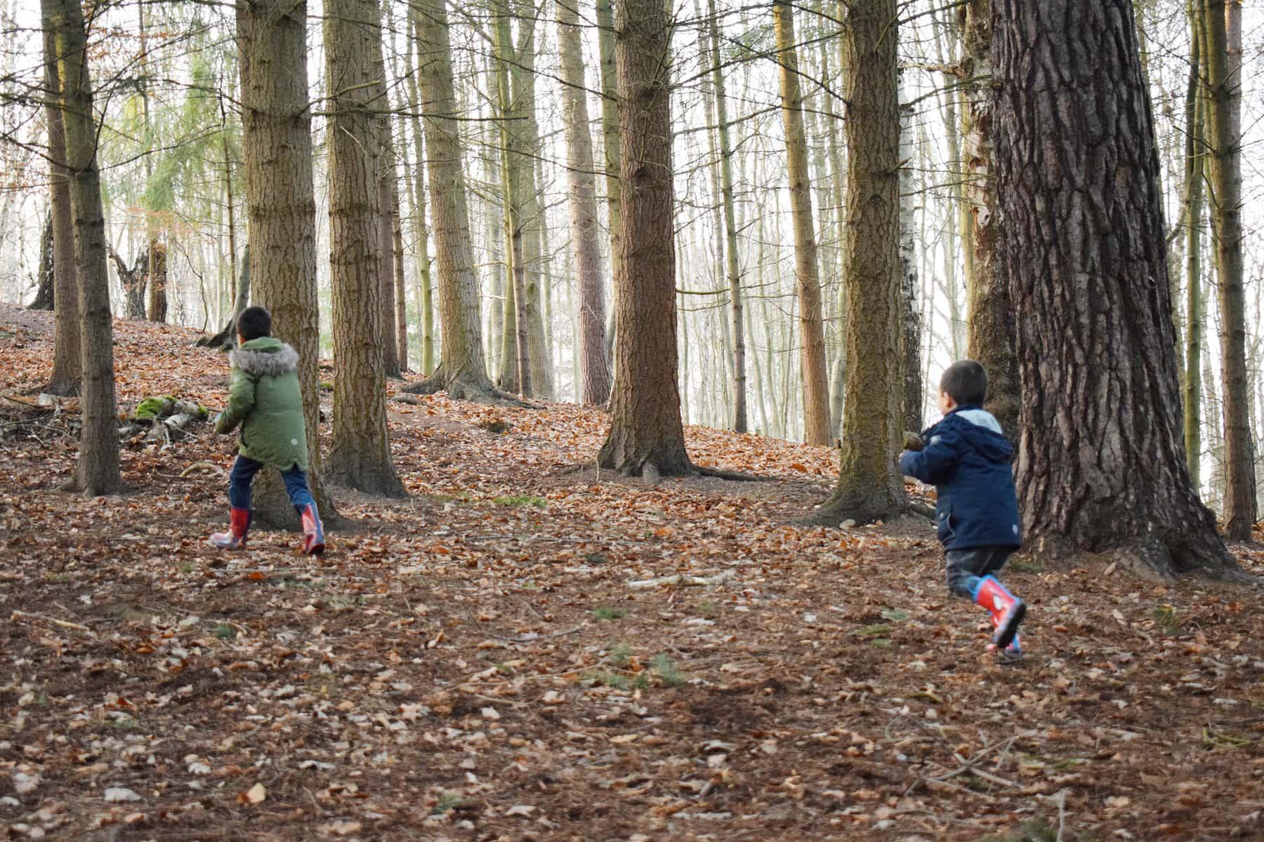 boys-in-woods-ft